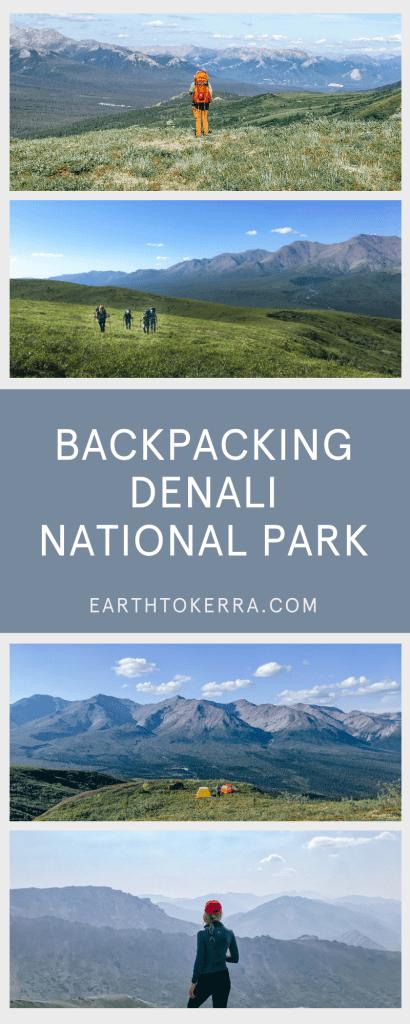 Denali National Park Pin