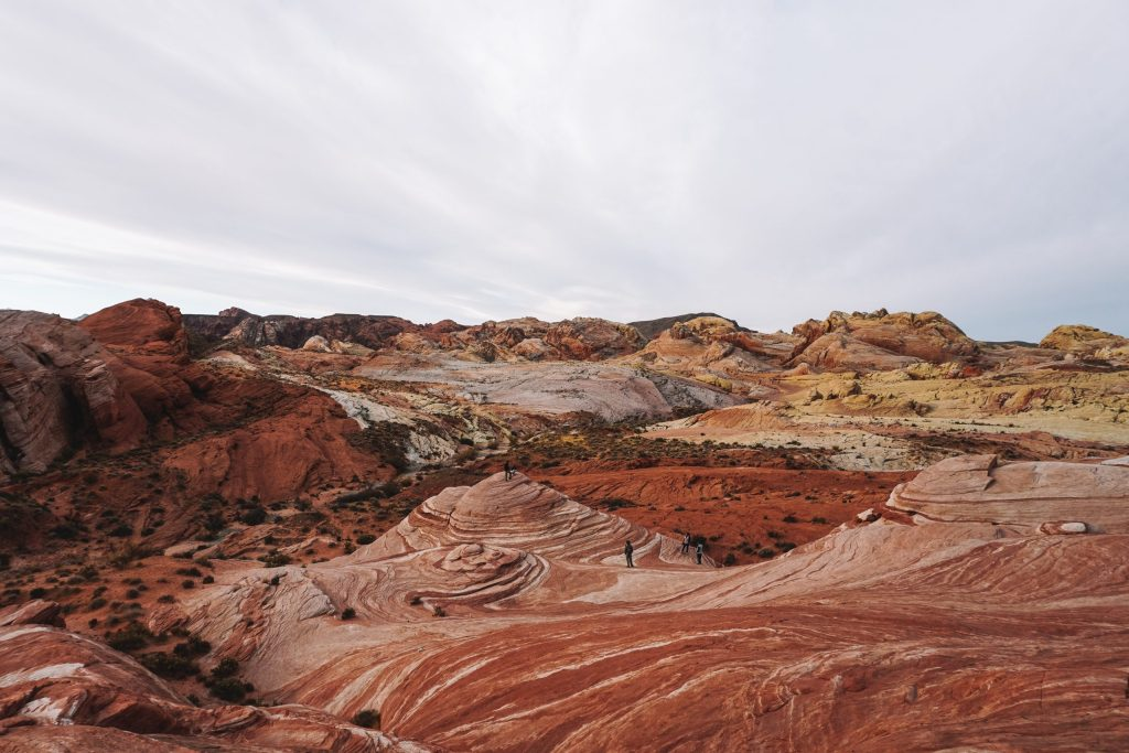 desert colors at sunrise in valley of fire state park
