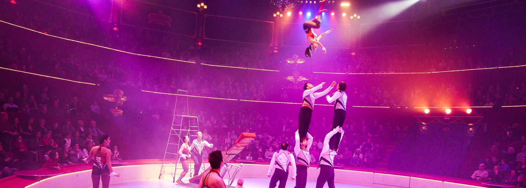 In Paris Between October and March? Go to the Circus!