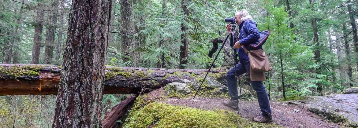 Andy photographing in the forest. He's had experience in how to buy a good DSLR camera for beginners.