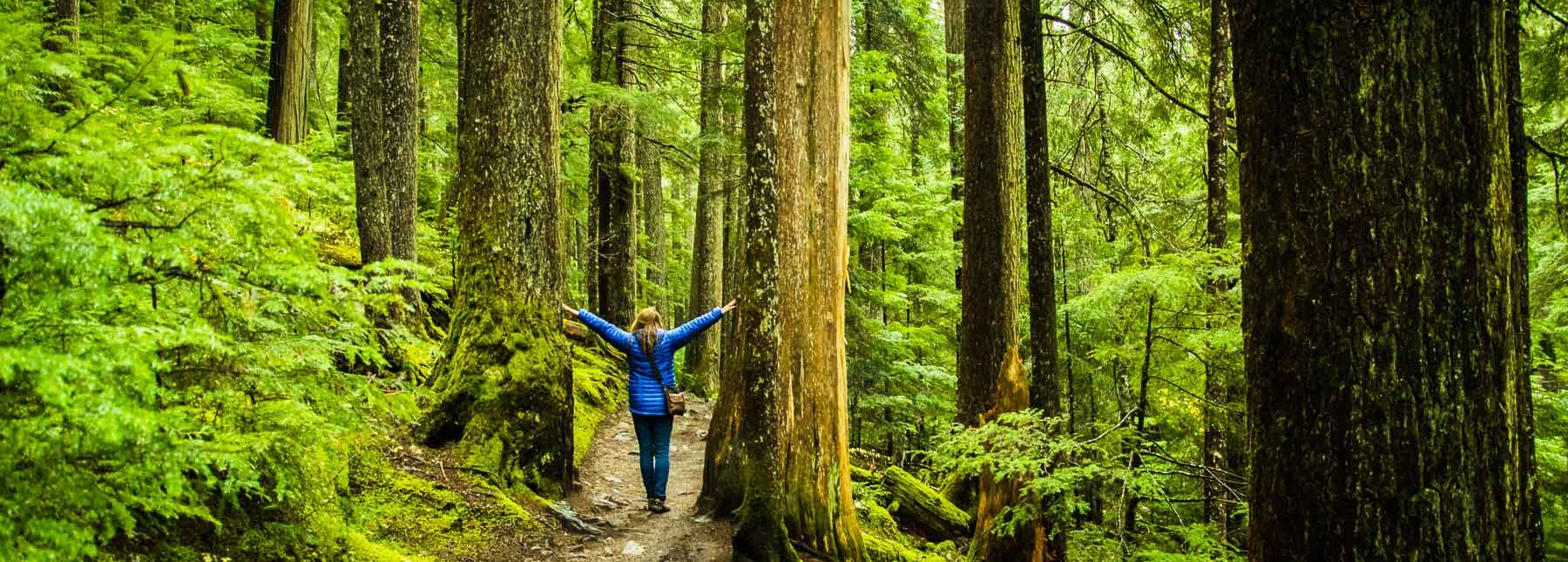 Forest Bathing and Blue Mind Life: The Time is Now