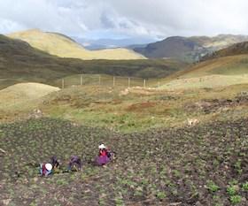 Máxima's land in Peru. Photo: Goldman Prize