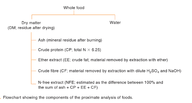 The Proximate Analysis of Food.png