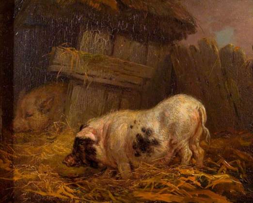 Ward, James, 1769-1859; A Chinese Sow