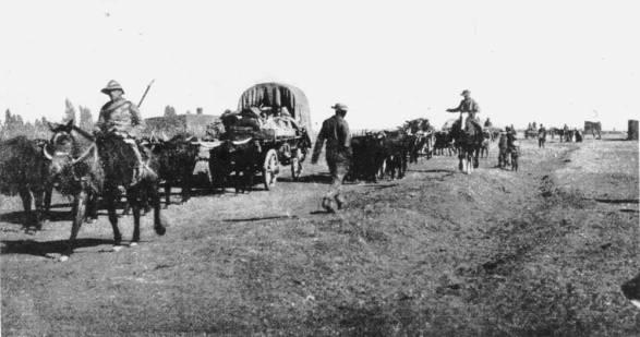 Boer war89