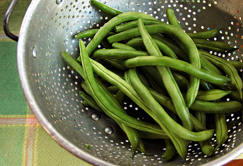 Fresh Picked Green Beans