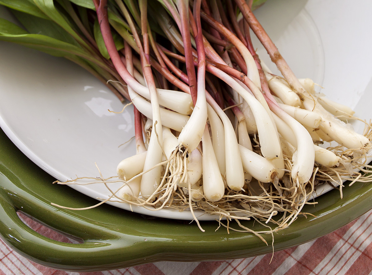 Ramps laying on a green platter