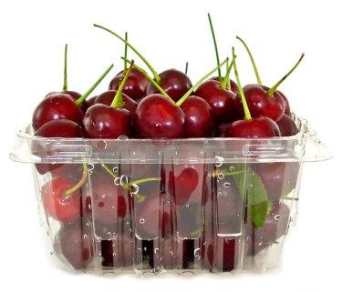 Balaton cherries