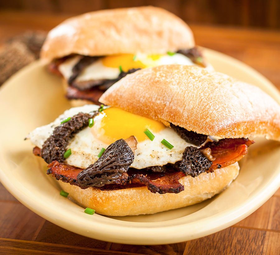 Bacon, Egg and Morel Sandwich
