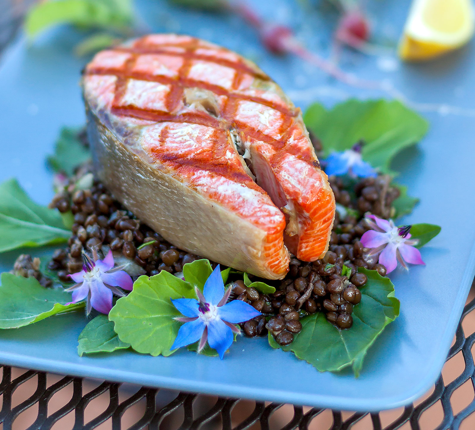 Grilled Salmon with Black Beluga Lentil & Mushroom Salad Featured