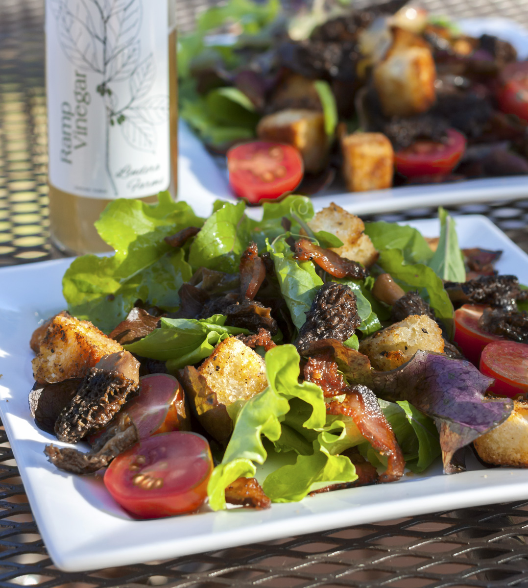 BLT Salad with Jowl Bacon and Morels