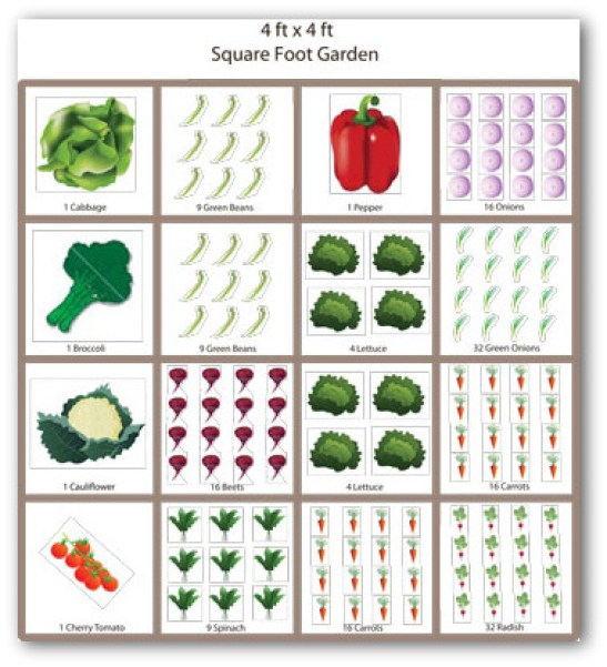 img-free-square-foot-vegetable-garden-plan