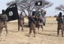 Boko Haram, others remain a threat –US