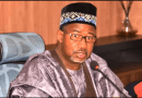 I sacked 21 commissioners because they can't play politics -Bauchi gov