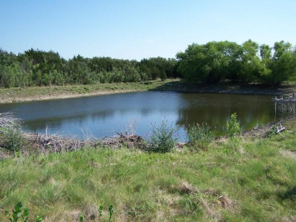 Building Stock Pond