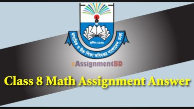 Class 8 Math Assignment Solution