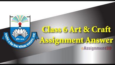 Class 6 Art & Craft Assignment