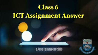 Class 6 ICT Assignment Answer