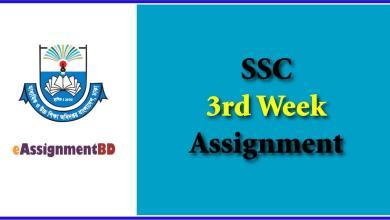 SSC 3rd Week