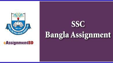 SSC Bangla Assignment