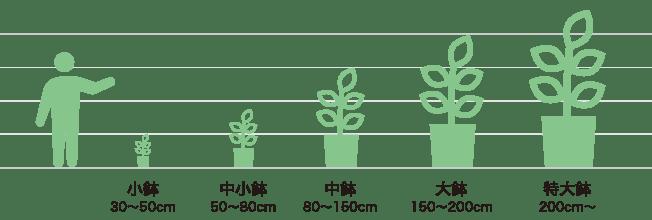 レンタルサイズ表