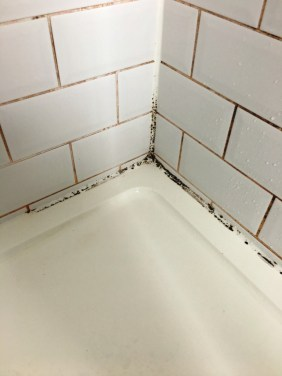 Stone Cleaning and Polishing Tips for Shower Tiles | Information ...