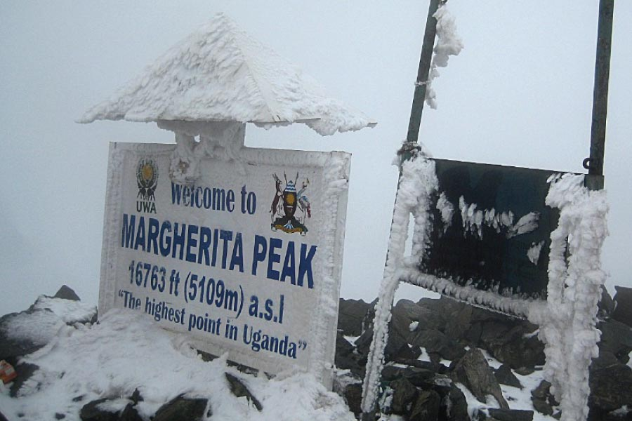 rwenzori mountains national park Margherita peak