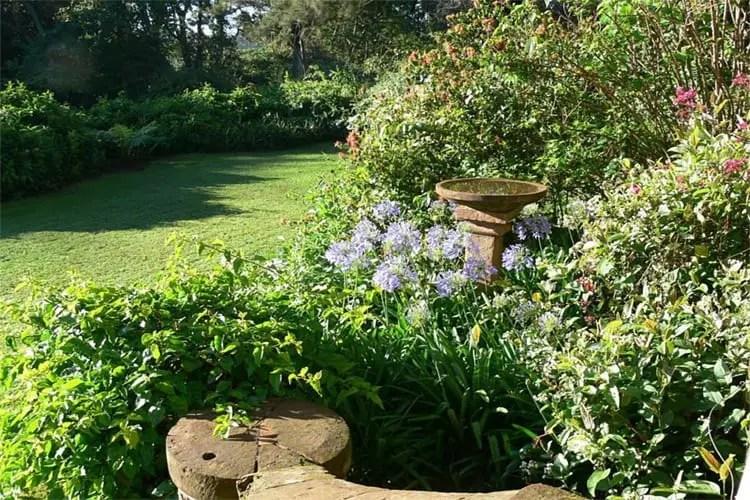 the constant gardener book summary