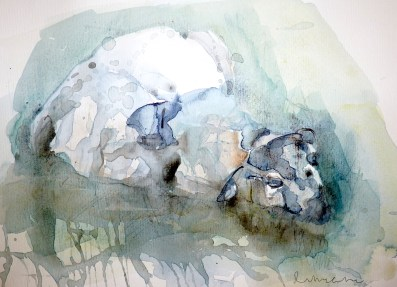 St Cuthberts Paper award - Sleepy Sheep by Ruth Mccabe