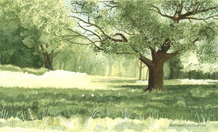 The Royal Watercolour Society President's Award: Summer Meadow by Anthony Mashman