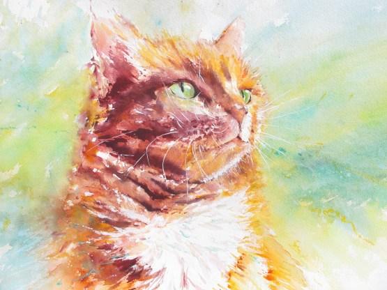 Bright Eyes by Chris Lockwood