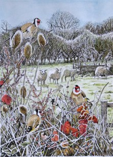 Goldfinches and sheep by Fran Godwood