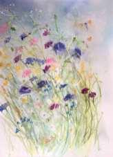 Cornflowers in the Hedgerow by Helen Clarke
