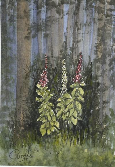 Amidst the Gloom by Linda Purdy
