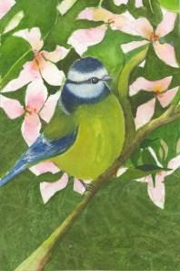 Early Bird by Patricia Stoten