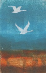 A grey wing on every tide by Sue Downie