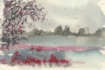 Colour on a Grey Day by Caroline Furlong