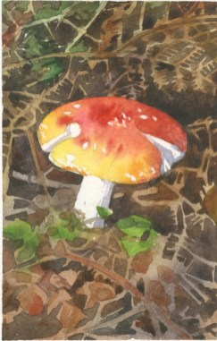 Fly Agaric by Helen Otter