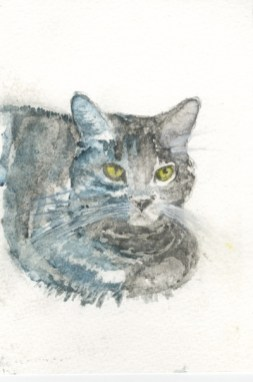 *SOLD* Silver Tabby by Sarah Haynes