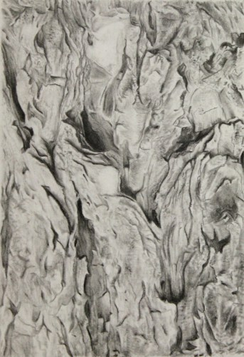 Texture Drawing