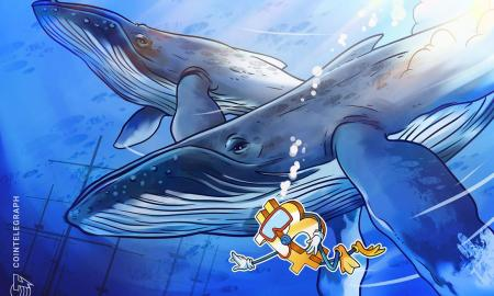 As-Bitcoin-price-staggers-'whale-wallets-may-be-becoming-an.jpg