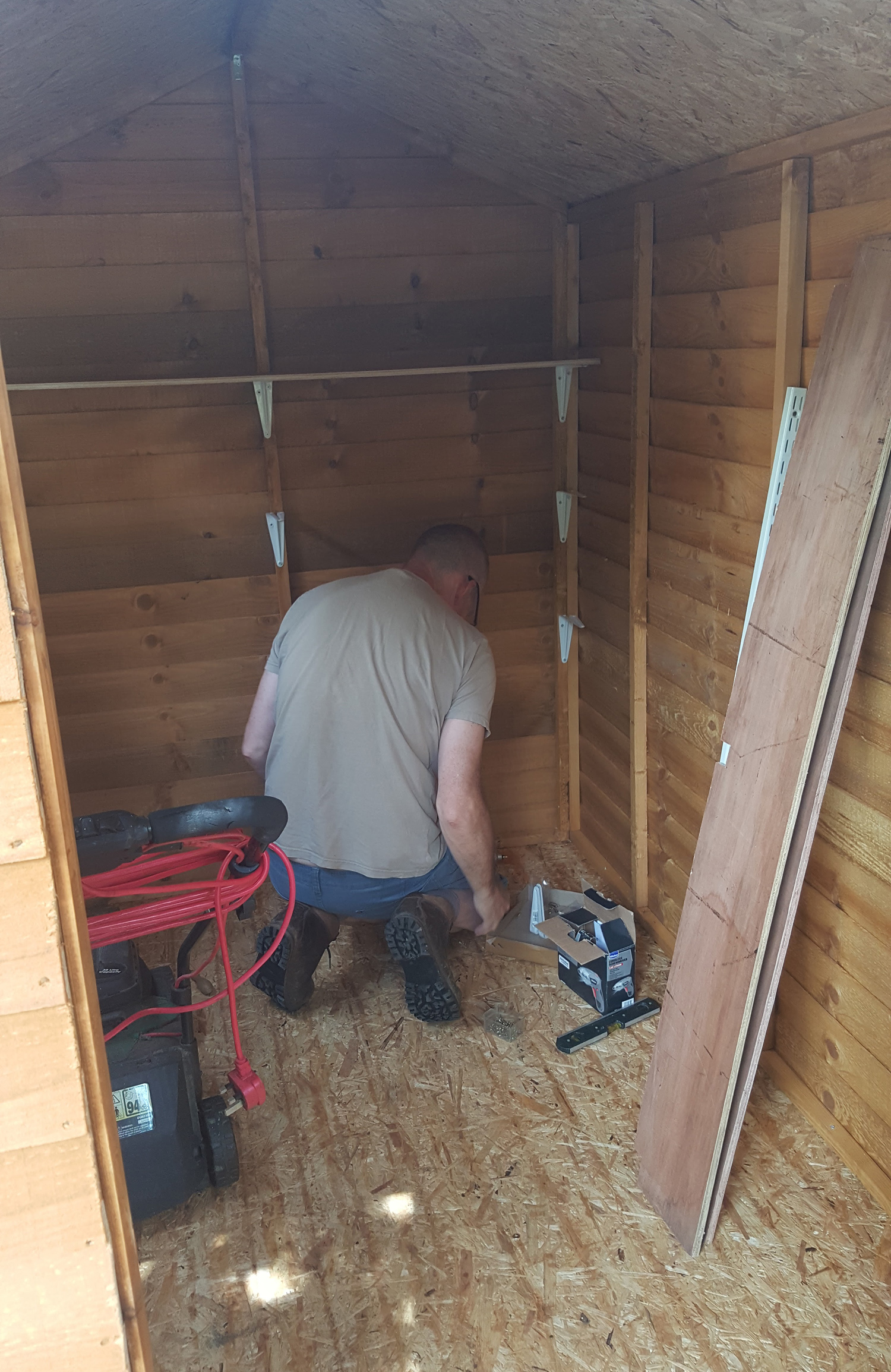 fixing shelves in the new shed