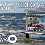 SABS video vault SEA AND BE SCENE TV communities and events featue(1)