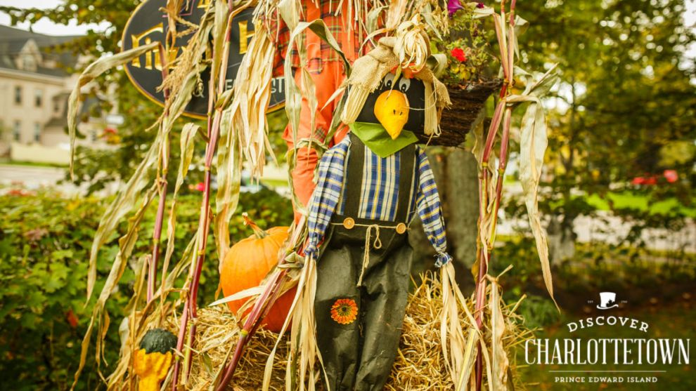 Discover Charlottetown Scarecrows in the City