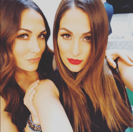 Famous People You Didn't Know Have Hispanic Background, the Bella twins, Nicole Bella, Brie Bella