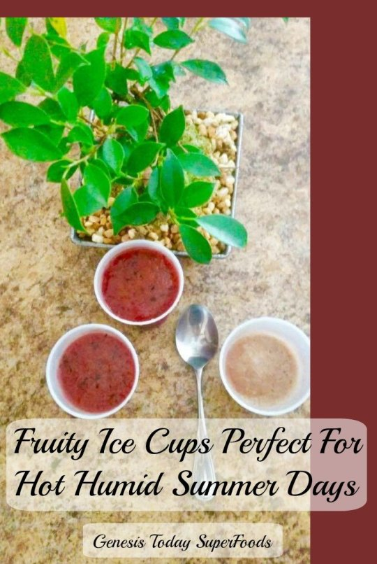 fruity ice cups, Genesis Today Superfoods, Genesis Today Superfruits