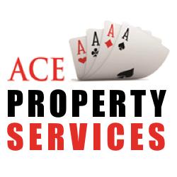 ace_property3