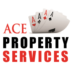 ace_property3