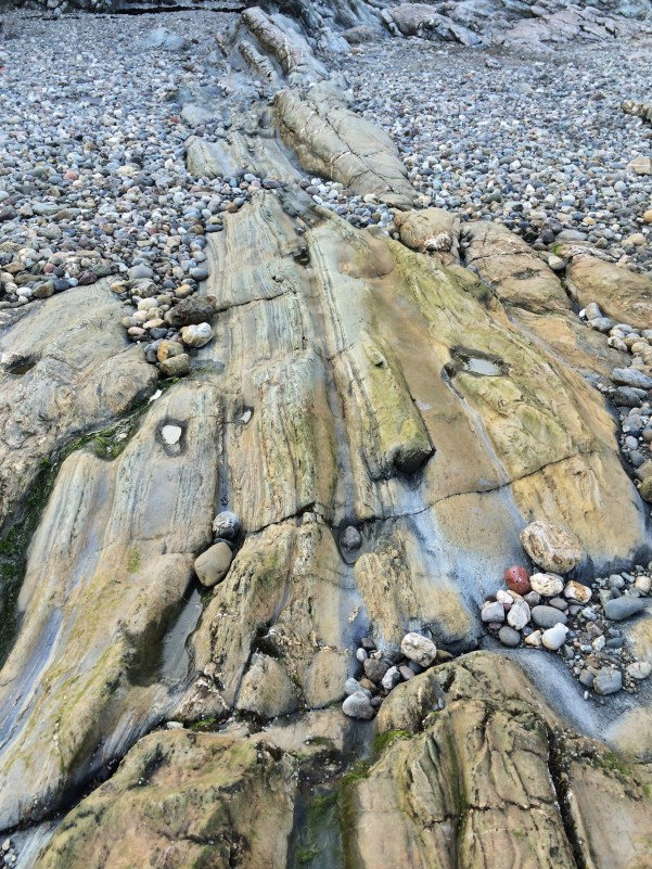 the most stunning old rocks made from petrified trees