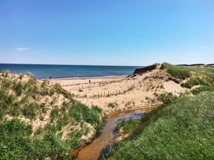 Cavendish Beach Dunes